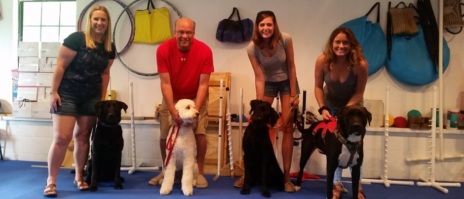 Therapy Dog Training Northwest Arkansas